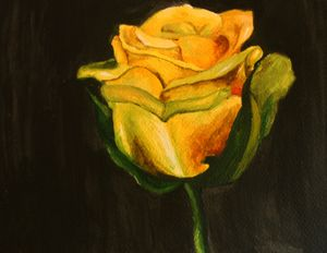 Yellow rose - ALNA TONY