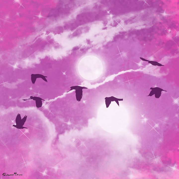 Night Sky - Zisha's Designs