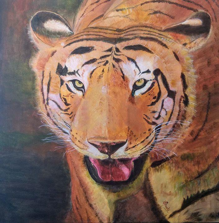 Indian Bengal Tiger - Shuchi