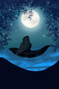Night at Lake