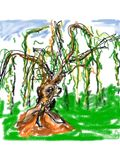 GCI portrait of a Spirit Tree