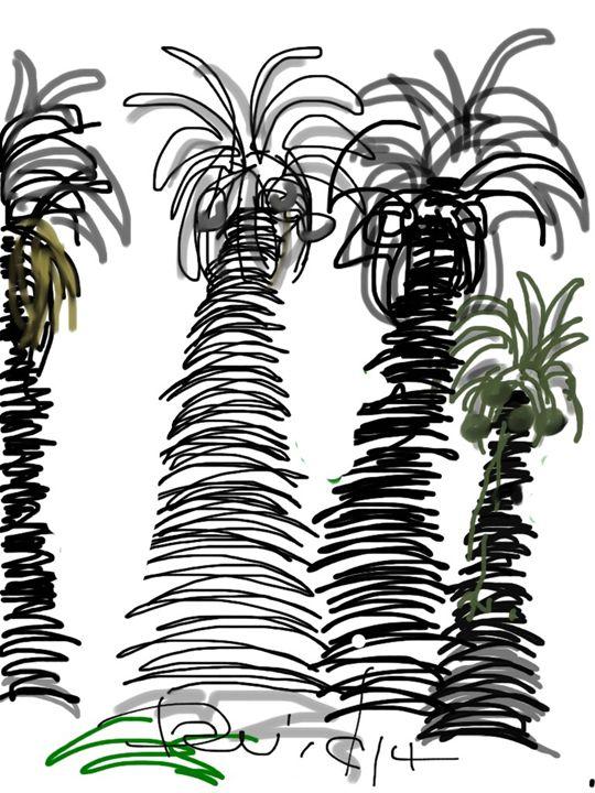 Stanford Palms VII - DavidMartinArt