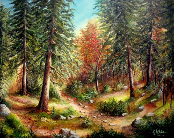 Under autumn wood - Gérard JEHIN