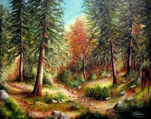 Under autumn wood