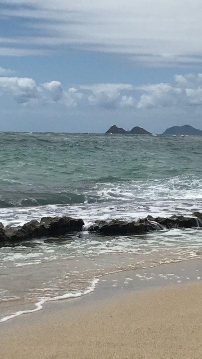 Shoreline Hawaii - Jo Jones