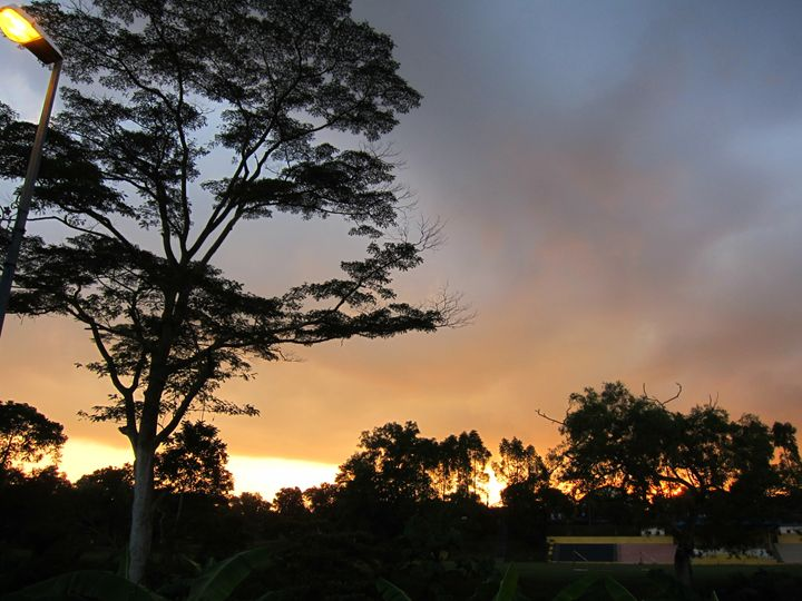 Sunset - jolynlong