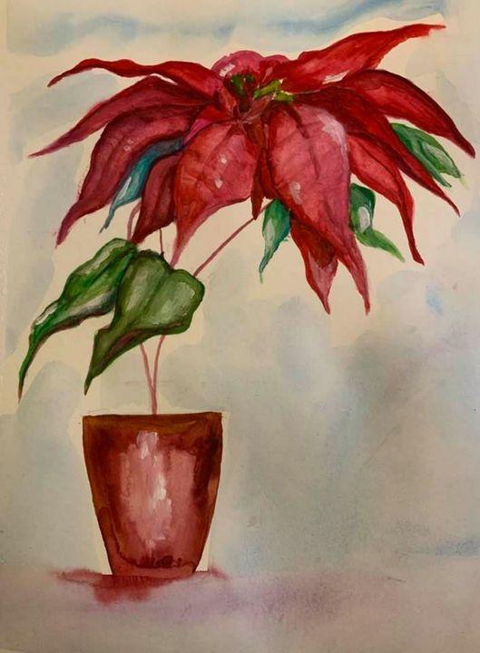 Christmas poinsettia - maureen thompson