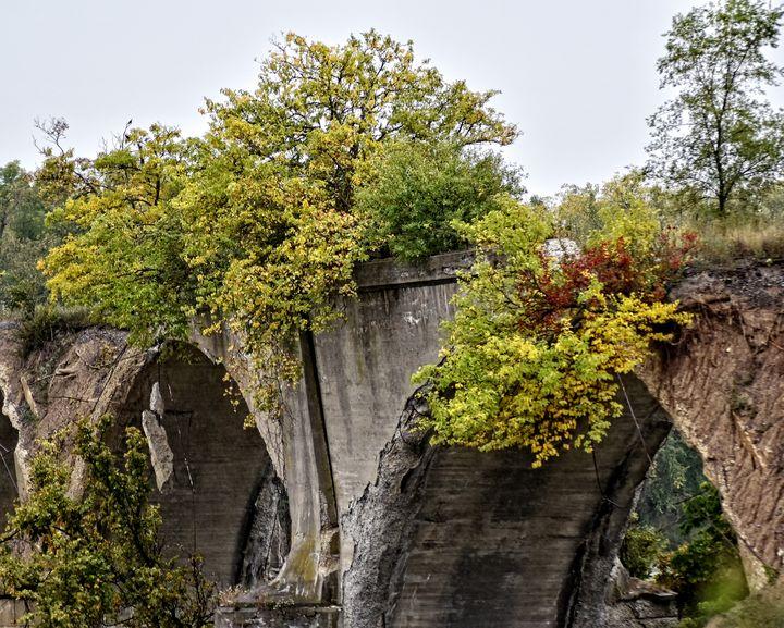 Ruins In Autumn - Staeble Studio A