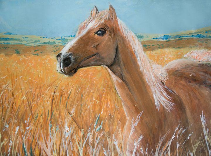 Brown Horse standing in field - Prabhdeep