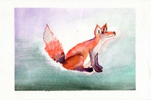 Red-tailed Fox