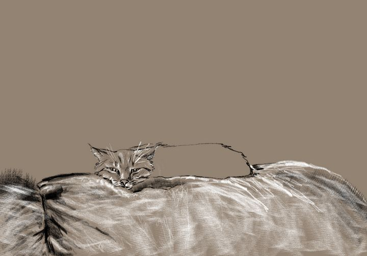 Couch Dweller - Christie Flemming
