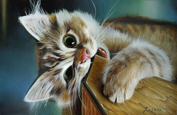 Baby cat - Velina Daskalova Art