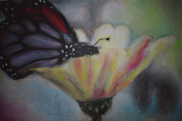 Butterfly on the flower - mislawh
