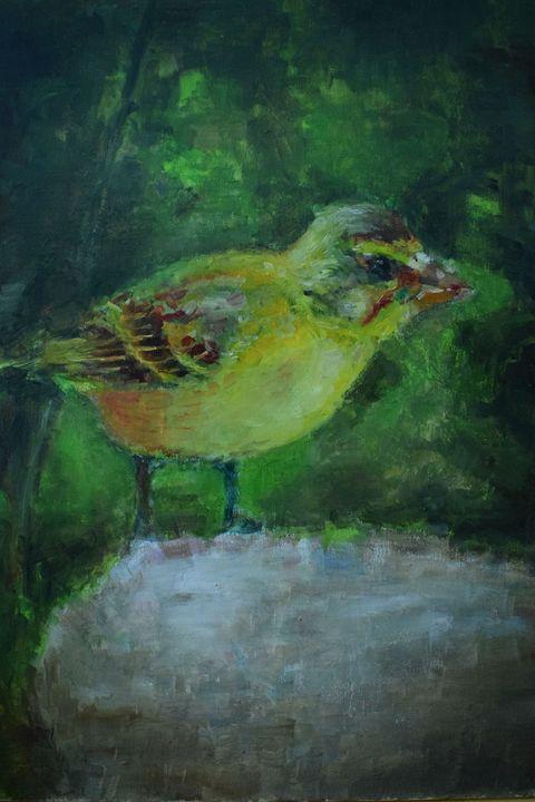Forest bird - mislawh