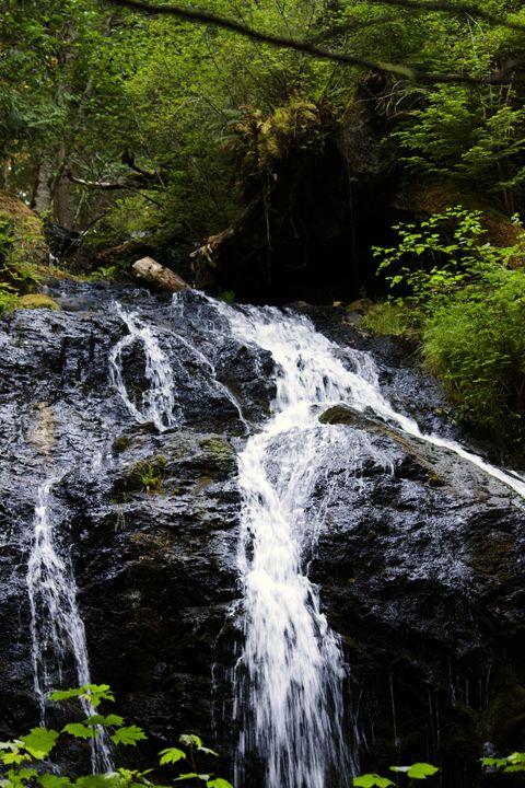 Cascade Falls 1 - Washington Artwork