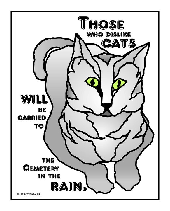 CEM CAT GREY - LARRY STEINBAUER