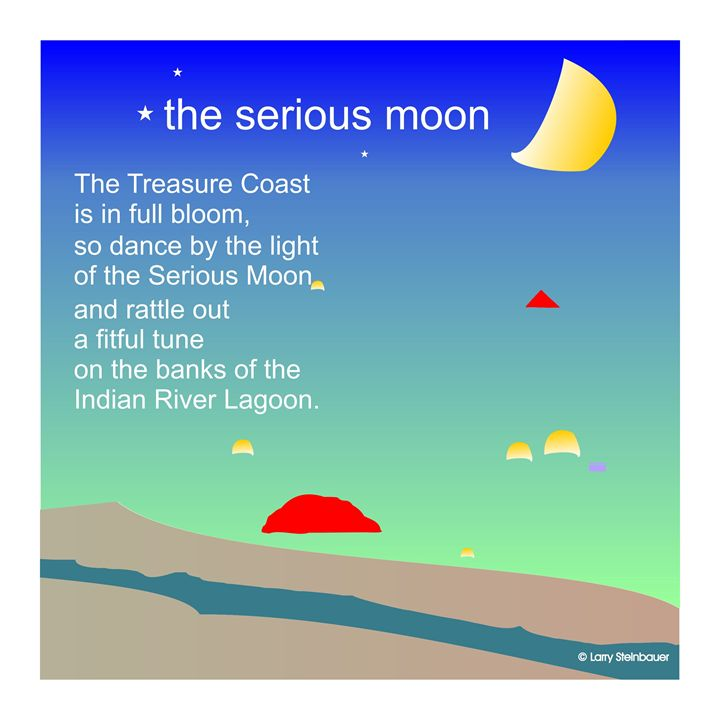 SERIOUS MOON - LARRY STEINBAUER