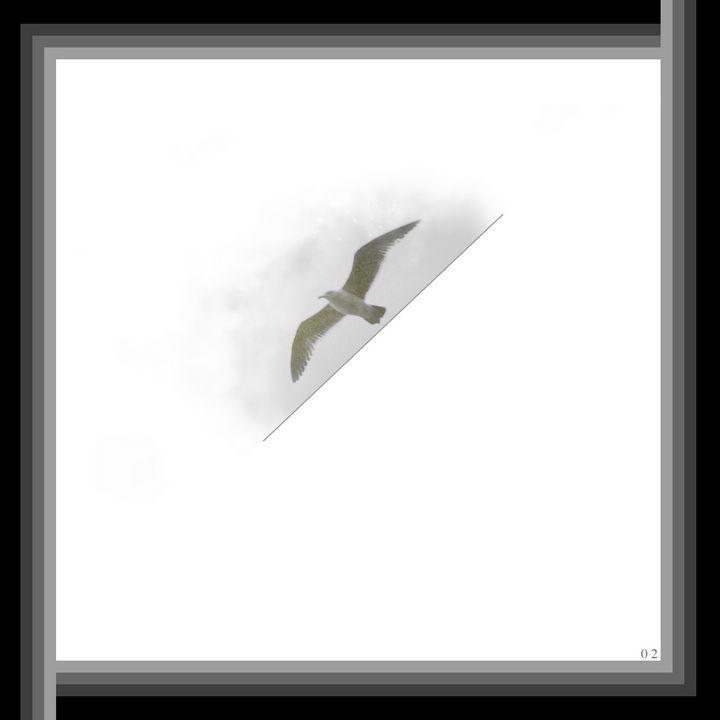 Stenciled Gull 2/2 - Hunter So