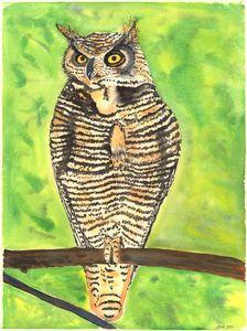 Wise Horned Owl