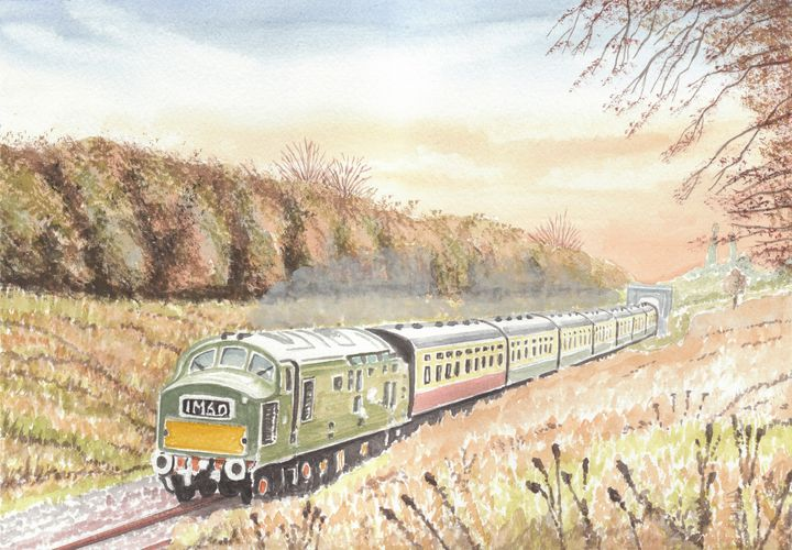 English Electric Class 37 D6948 - Papilios Creative