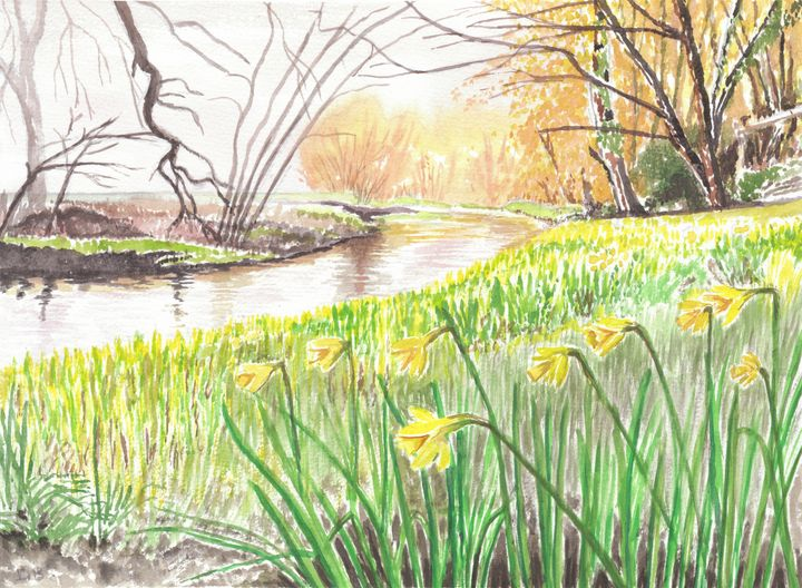 Daffodils Beside A Riverbank - Papilios Creative