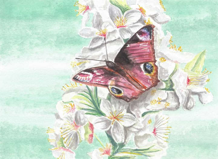 Peacock Butterfly On Apple Blossom - Papilios Creative
