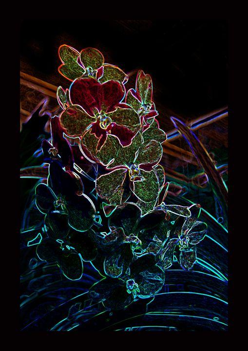 Flowery black XV - Magdalena Ziemak