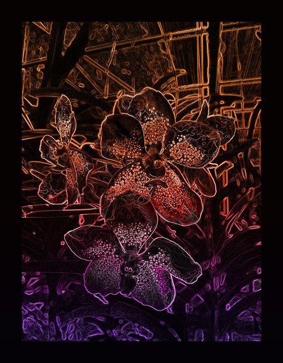 Flowery black VIII - Magdalena Ziemak