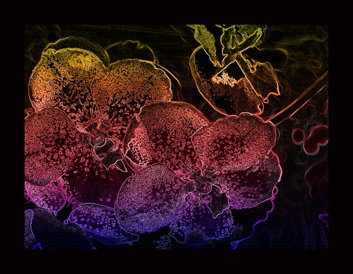 Flowery black VII - Magdalena Ziemak