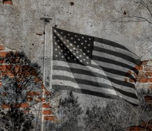 The Flag That Built Me