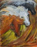 on canvas                       '