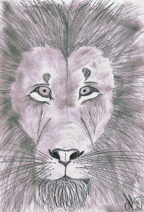 Lion Sketch - Samantha McGill