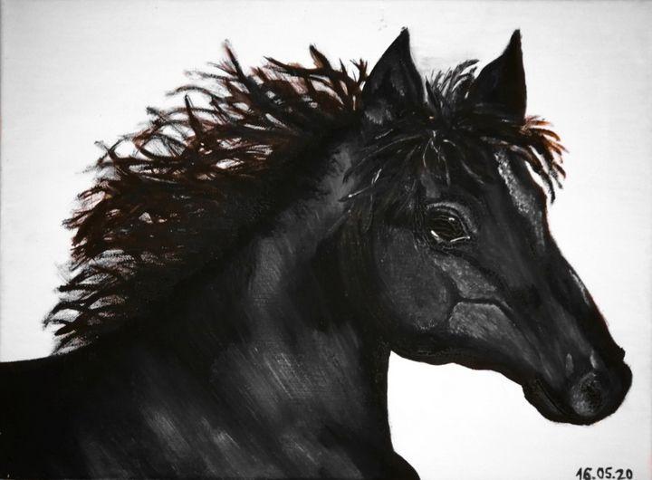 Black Horse - anastaseeya