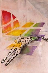 Rainbow dalmatian