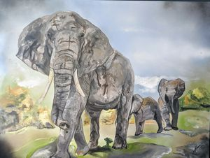 La Elephants