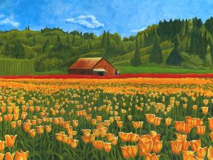 Tulip Field - The Dominic White Studio