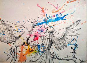 Bird's fight