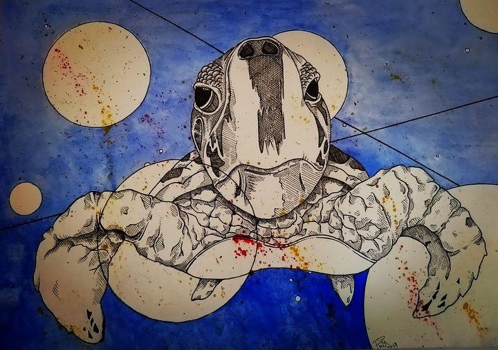 Hawksbill sea turtle - PietroParisArt