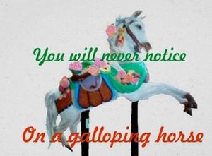 YOU WILL NEVER NOTICE ON A GALLOPING
