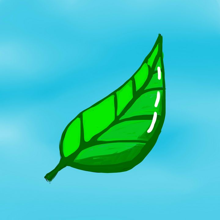Leaf - Tim's Art