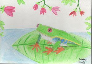 Frog on leaf at the lake