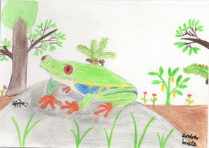 red eyed rainforest frog with an ant