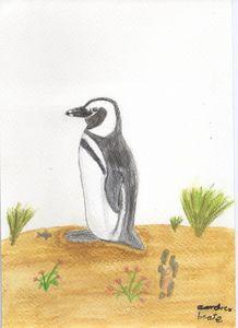 Humboldt penguin waiting onshore - Gemälde Kreuze