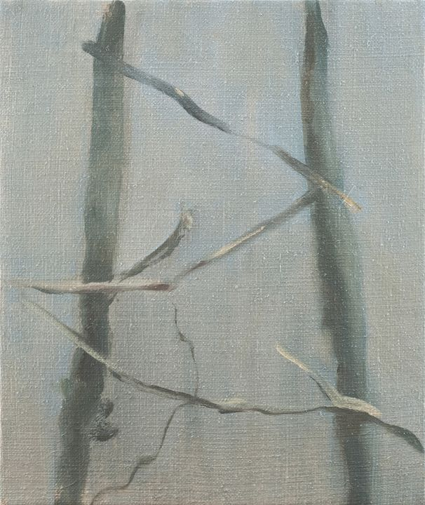 Barren Grapevines on Two Stakes - Julia Stania