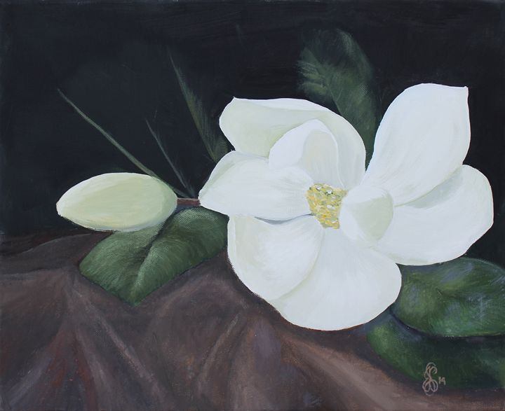 Magnolia Bloom - Scott Cupstid