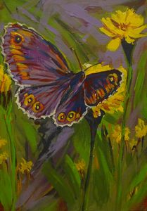 butterfly with yellow flower garden