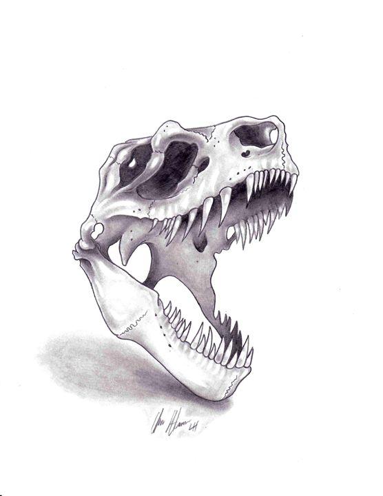 t rex skull studio hansen drawings illustration animals