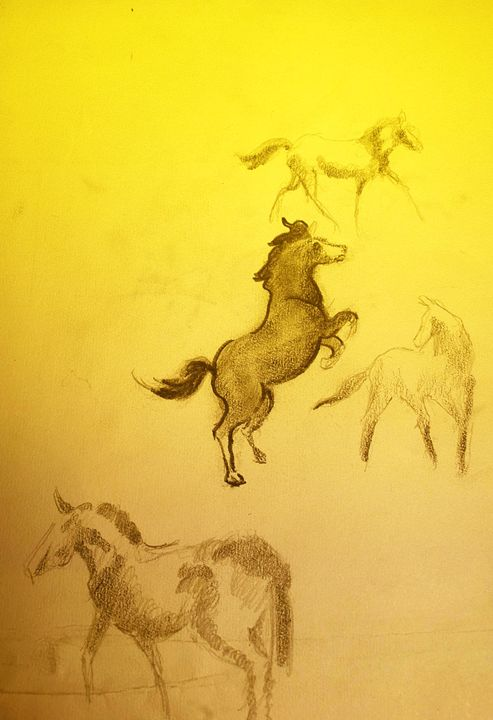 caballos - manuel baez