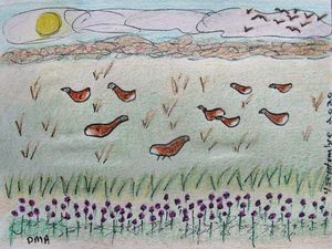 Geese in the Fields