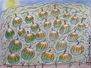 Field of Pumkins
